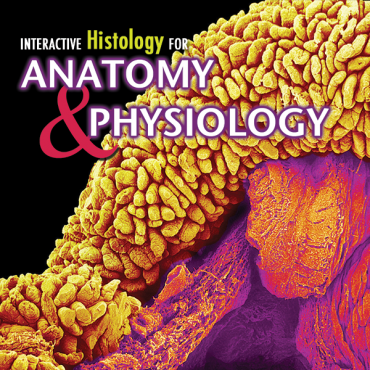 Interactive Histology CD for Anatomy & Physiology – bluedoor Shop