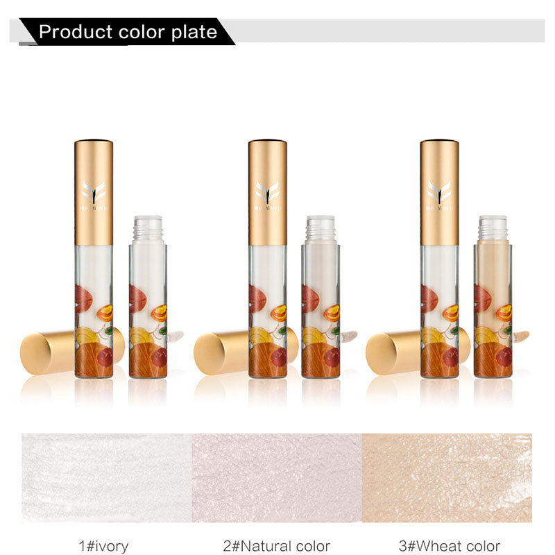 Liquid Concealer Base Foundation