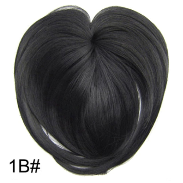 Silky Clip-On Hair Topper 1b