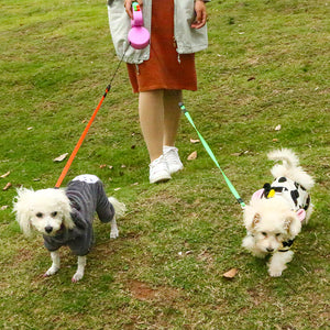 BOOMY | DOG LEASH FOR TWO