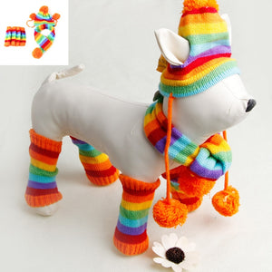 Stripe knitted dog winter accessories