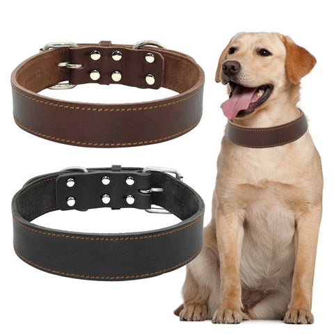 Genuine Leather Collar For Large/Medium Dog - doggy in style