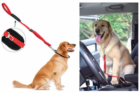 Dog Car Travel Seat Belt & Walking Lead - doggy in style