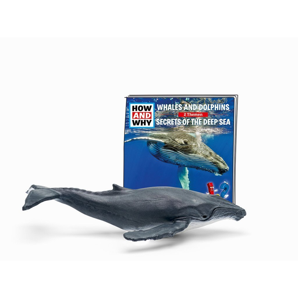 Whales & Dolphins Educational Tonie - Little Whispers