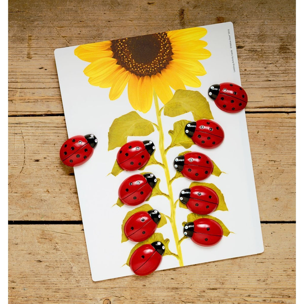 Yellow Door Ladybugs Counting Cards - Little Whispers