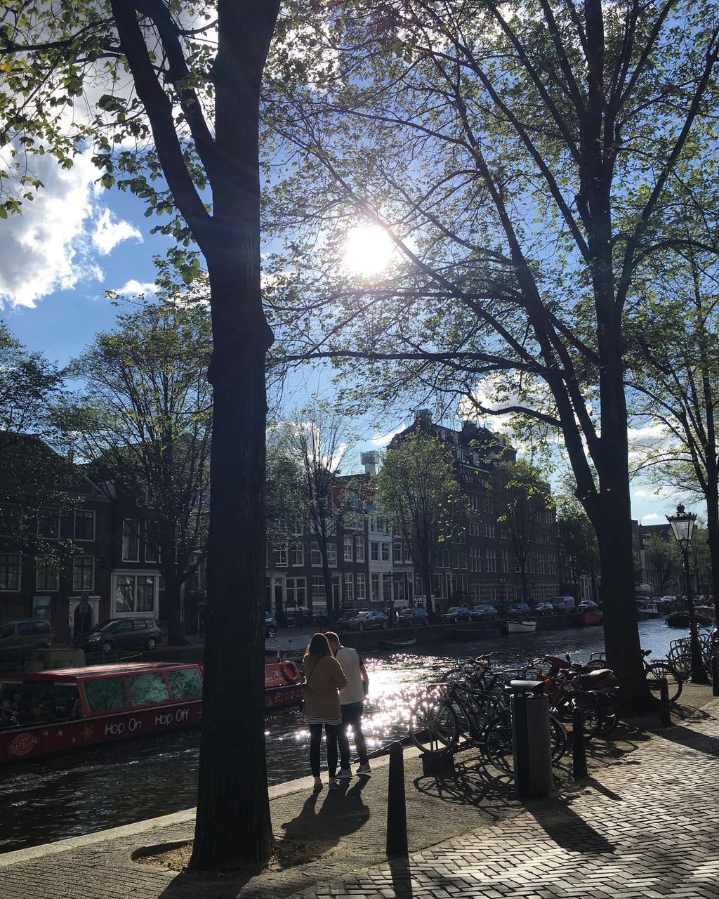 Hot 'Dam! A Quick Stop in Amsterdam.