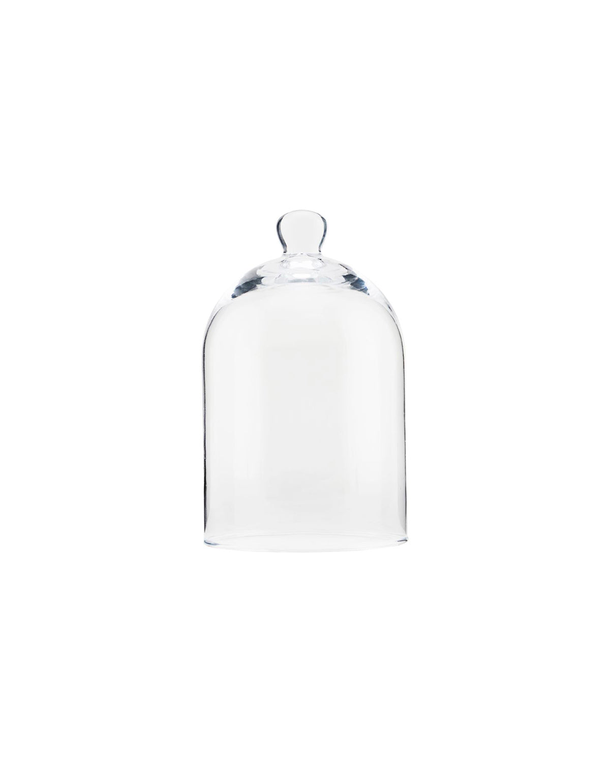 Glass Bell jar With Handle