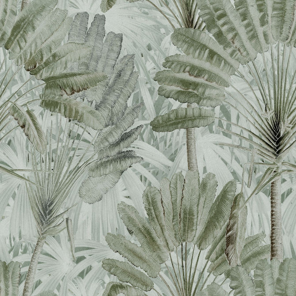 Traveller's Palm Wallpaper