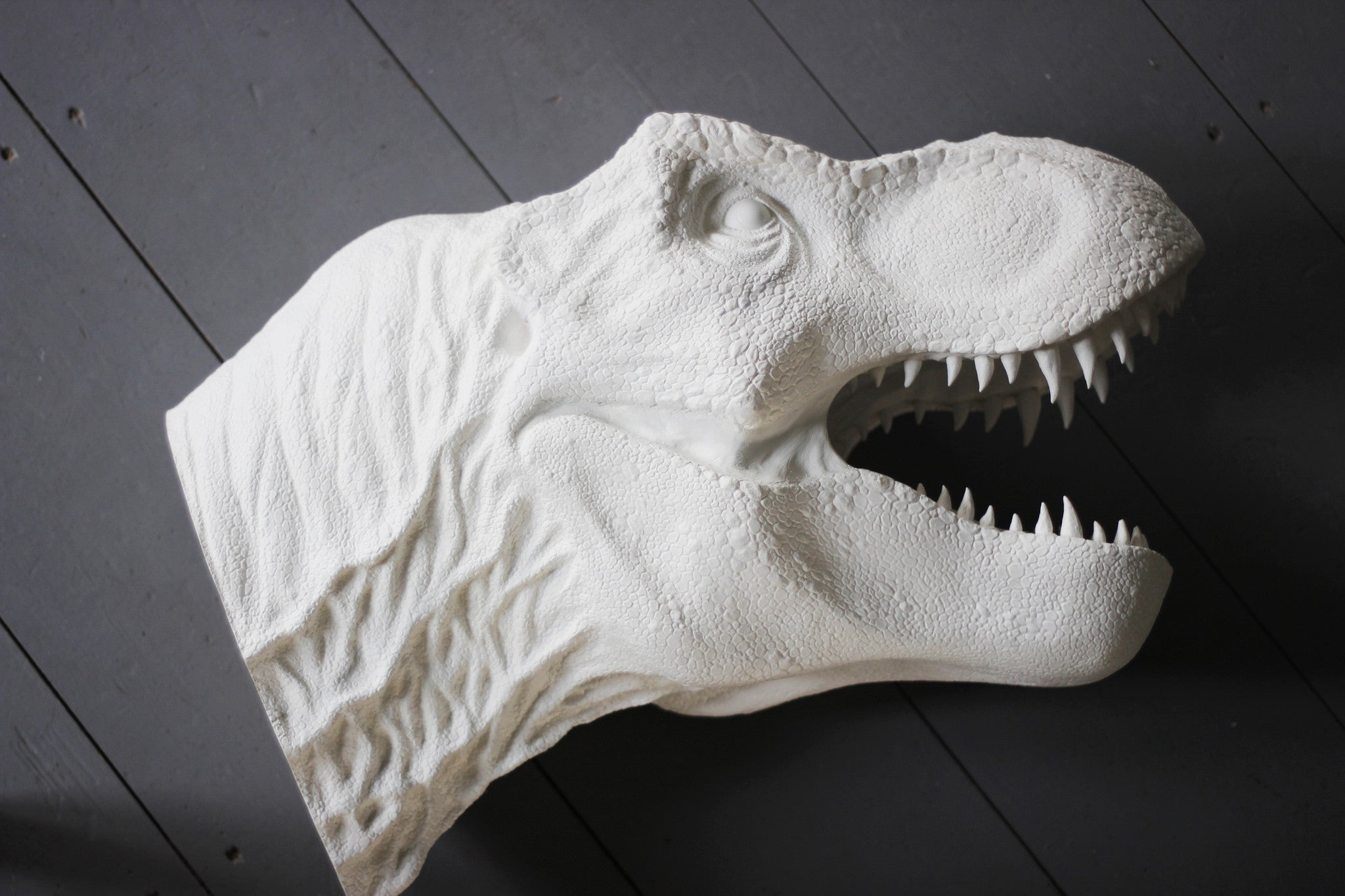 Bespoke T Rex Dinosaur Head Wall Mount April Amp The Bear