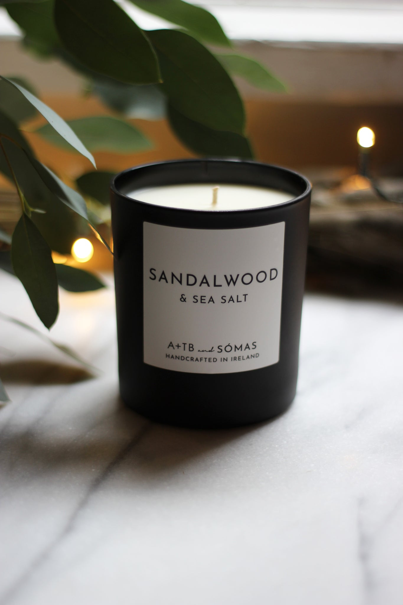 Sandalwood + Sea Salt Candle - Exclusive