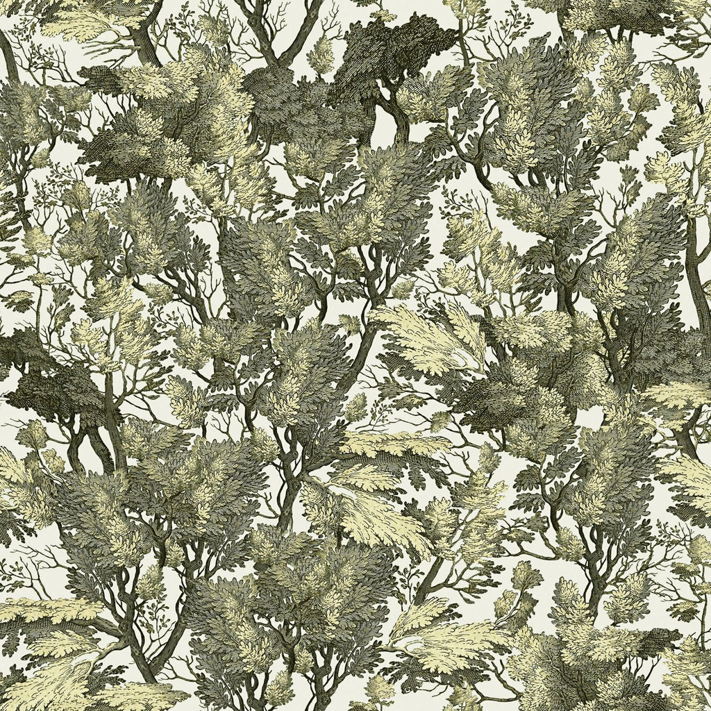 Tree Foliage Wallpaper