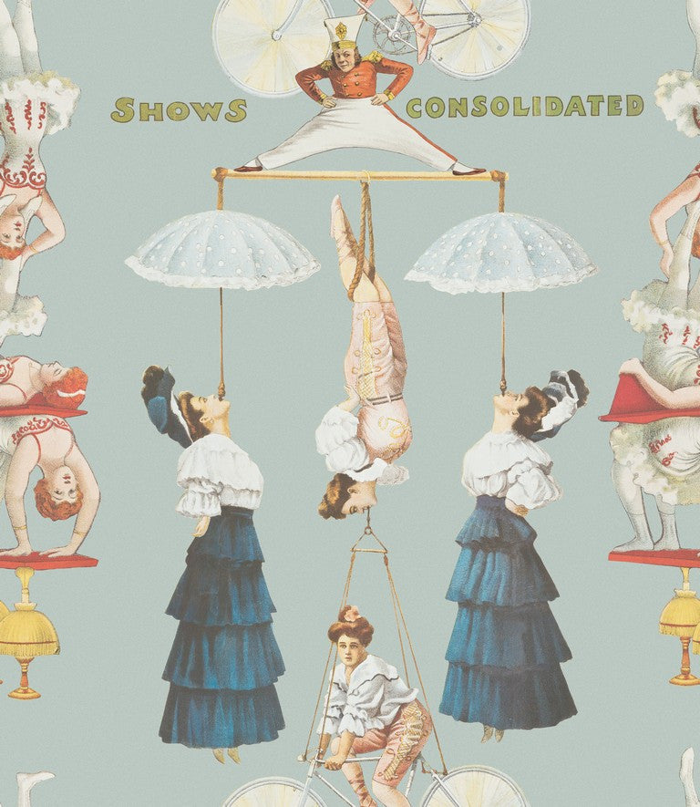 The Great Show Blue Circus Wallpaper April The Bear