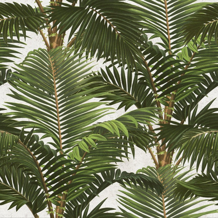 Jardin Tropical Leaf Wallpaper