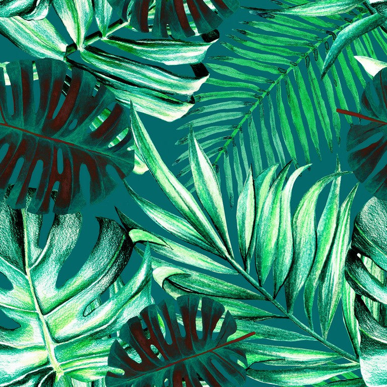 Rainforest Leaves Wallpaper April The Bear