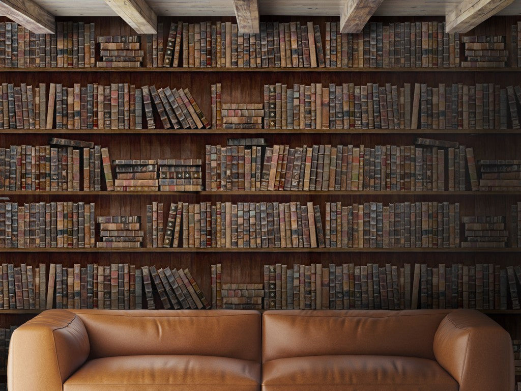 Book Shelves Wallpaper