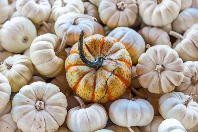 How To Help Your Hair Grow With Pumpkin