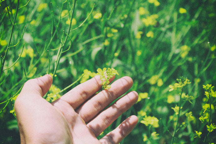 4 Ways To Nourish & Protect Your Hands