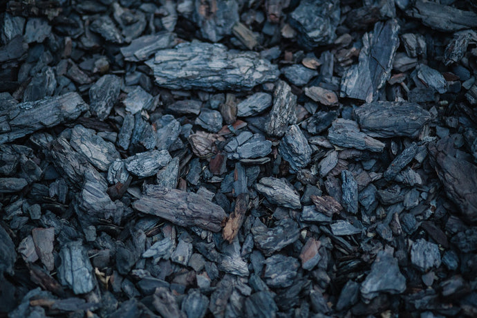 The Science Behind Activated Charcoal