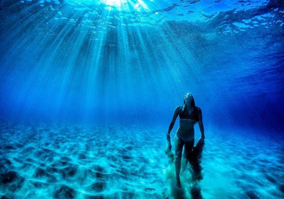 Take Perfect Underwater Pictures With Your iPhone