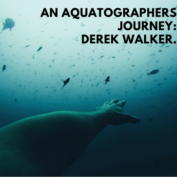 An Aquatographer's Story: Derek Walker