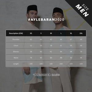 #AYLEBARAN2020 Men's Kurta in Mint