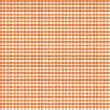 Orange 1/8 inch Gingham -Riley Blake