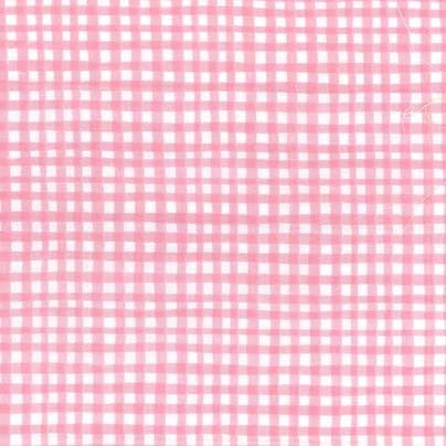 Gingham Play - Carnation - Michael Miller