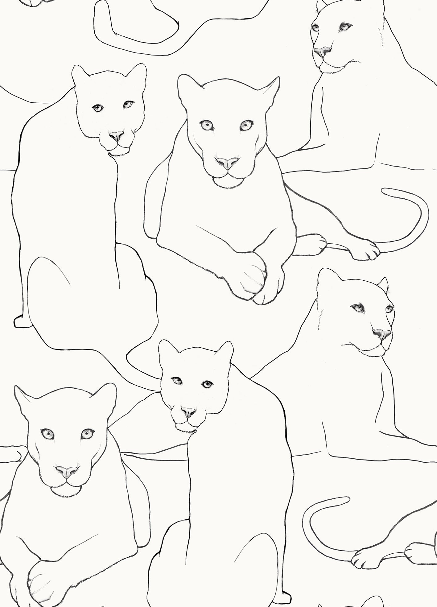 Big cats Wallpaper Sample - Ivory