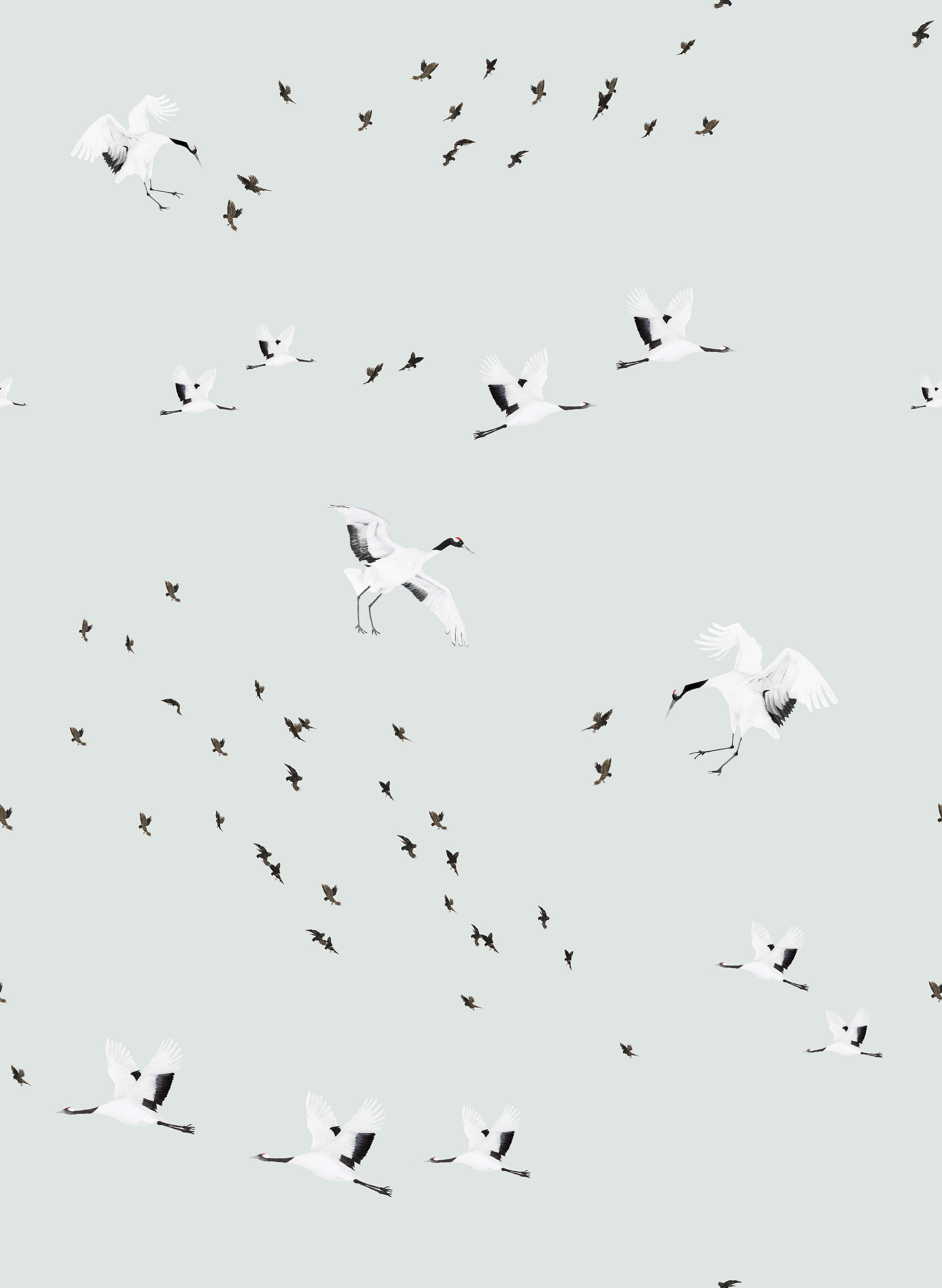 Birds in Flight Wallpaper Sample- Duck Egg