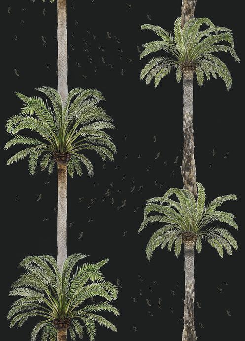 Palm Springs Wallpaper Samples - Black