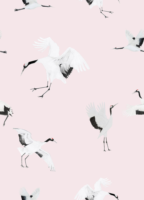 Storks Wallpaper Sample - Pink