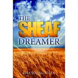 The Sheaf Dreamer