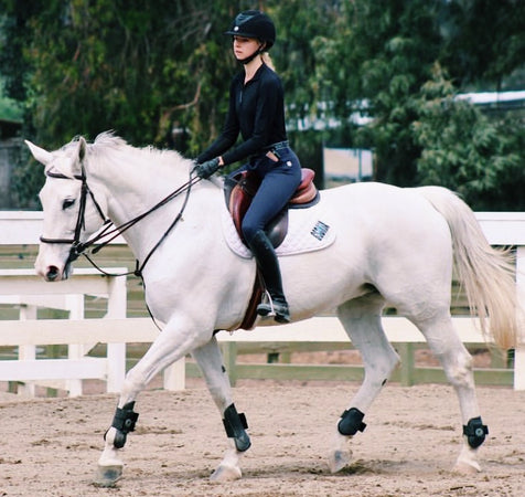 Making Improvements Despite Infrequent Lessons: Tips for Busy Equestrians