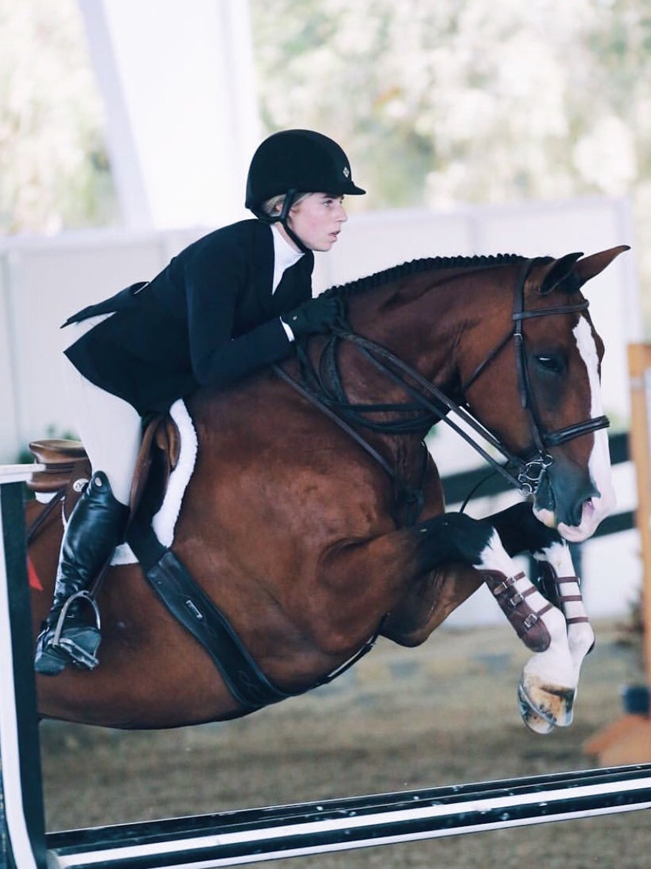 The Fit Equestrian - Fitness programs tailored to the equestrian athlete.