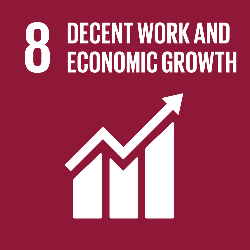 A Brief Look at the SDGs and the Circular Economy (in India): Goal 8