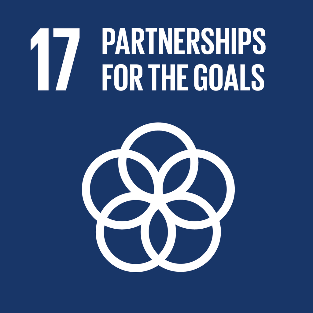 A Brief Look at the SDGs and the Circular Economy (in India): Goal 17