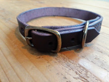 Handstitched Leather & Brass Dog Collar