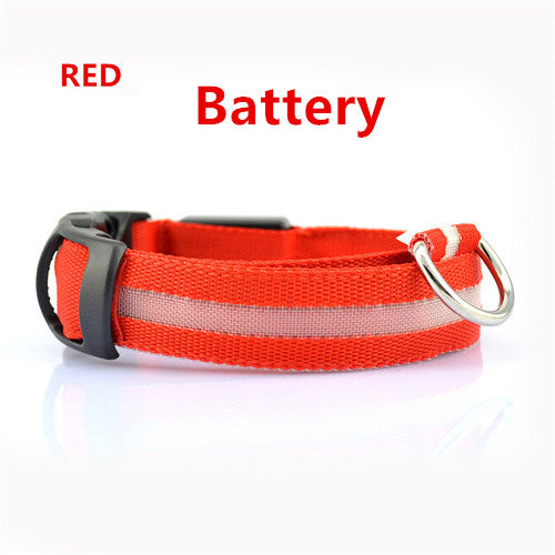 Red Battery Light Up LED Safety Collar