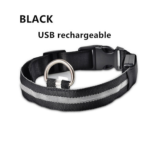 Black USB Rechargeable Light Up LED Safety Collar