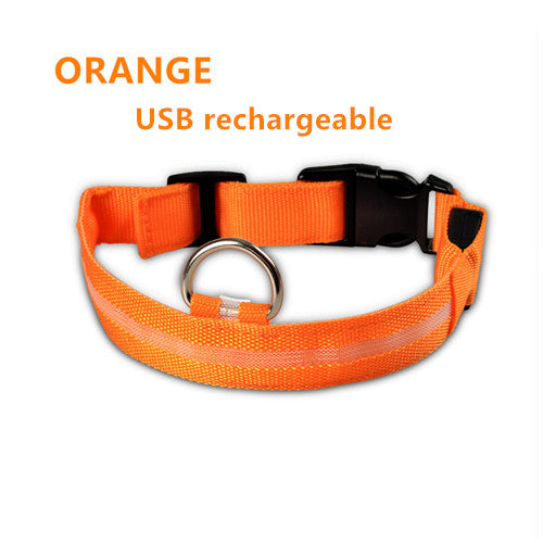 Orange USB Rechargeable Light Up LED Safety Collar