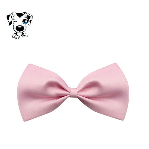 Cat Dog Bow Tie Pet Collar - D'aww Factory