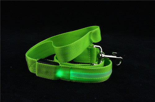 Green USB Rechargeable Safety Light Up Leash