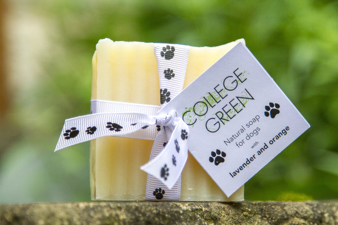 New! Natural soap for dogs.