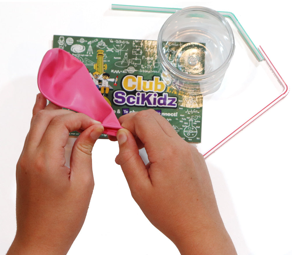 Club SciKidz STEM Box Veterinary Medicine