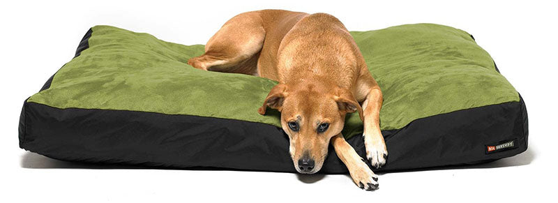 Find The Best Washable Dog Bed: The Definitive Guide