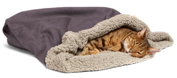 Den Pet Bed - For Small Dogs & Cats