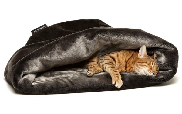 Taza Pet Bed - For Small Dogs & Cats