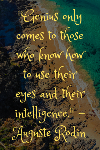 """Genius only comes to those who know how to use their eyes and their intelligence."" - Auguste Rodin"
