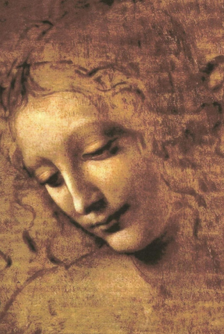 Head of a Woman by Leonardo da Vinci