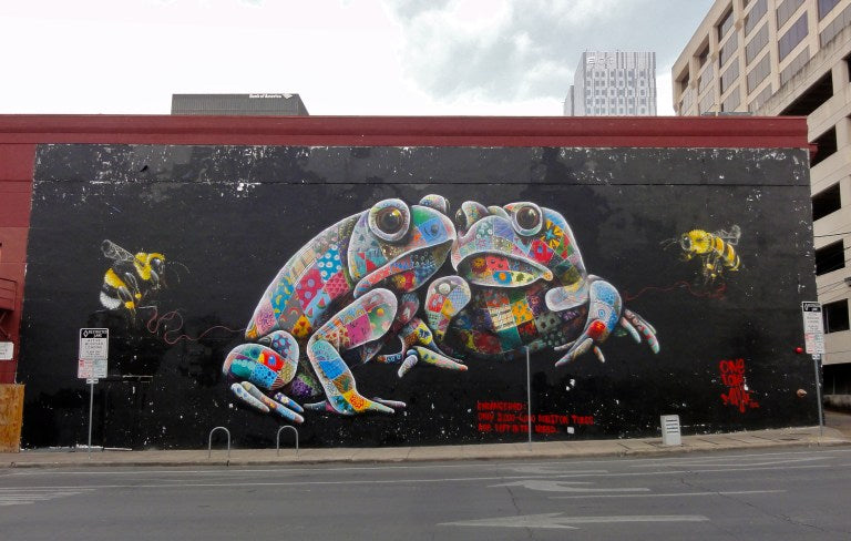 Houston Toad Mural In Austin